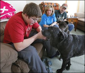 Austin James, 17, plays with Maggie, formerly Princess P, at the home of his parents, Shannon and Terry James in Bradner, Ohio. The family also has another dog, Milo.