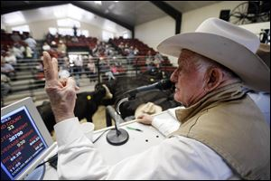 Jim Warren, owner of 101 Livestock Market, conducts a cattle auction in Aromas, Calif.