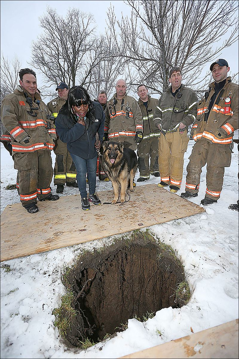 firefighters rescue dog from sinkhole in buffalo  ny  park  owner narrowly avoided plunge