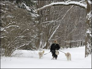Julia Pollock wears snow shoes to take her goldendoodles, Cody, left, and Bond, right, for a walk in the fresh snow today in Shaker Heights, Ohio.