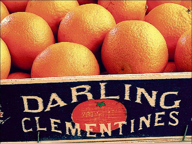 A mini-crate of clementines. A mini-crate of clementines.