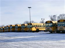 Many-TPS-busses-suffered-maintenance-issues-from-the-cold