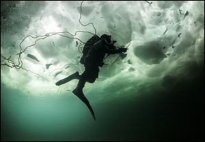 Rich Synowiec of Monroe swims beneath 20 inches of Lake Erie ice during a dive in Colchester, Ont.