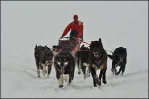 Matt Failor, an Ohio State grad whose parents are natives of the Toledo area, is competing in the historic Iditarod Trail Sled Dog Race for the third time.