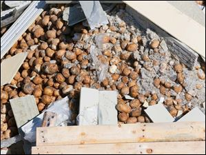 Potatoes and other debris from tractor-trailer rigs lie on the side of the eastbound lane of the Ohio Turnpike.
