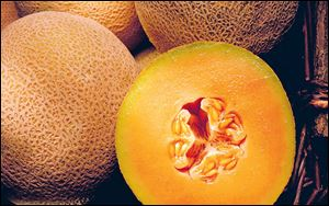 The pitted rind of the cantaloupe is perfect for hiding bacteria.