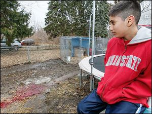 Daniel Perez, 12, looks toward the pool of blood from where the bodies of  two of the family's dogs were left after police shot them.