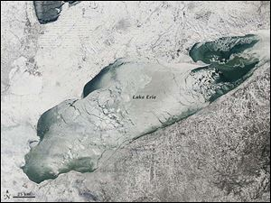 The satellite image taken by NASA Earth Observatory on Jan. 9 show the extensive ice cover on Lake Erie that developed this winter. The persistent cold temperatures and abundance of sub-zero days created ice that covered 92.2 percent of the total surface area of the Great Lakes on March 6, according to the Weather Channel.