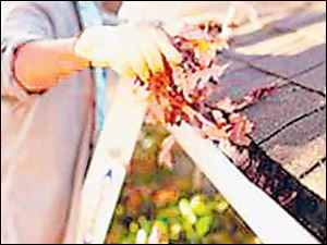 Clean the gutters of leaves and debris.