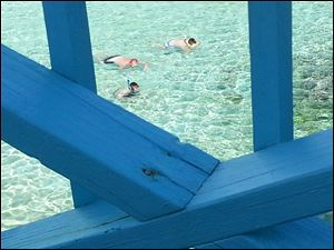 Snorkelers can be spotted from a deck in Eleuthera in the Bahamas.