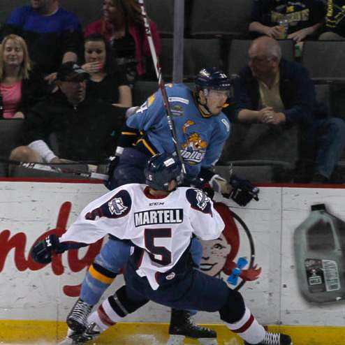 Walleye-player-on-the-boards