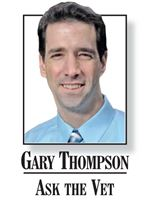 Dr-Gary-Thompson-Ask-the-Vet