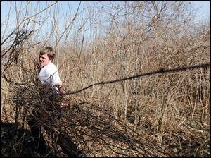 Jacob Bass, 18, a junior at Bedford High School working on entangled vines.