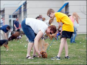 Rebecca Schwiebert, left, and son Joshua Schwiebert help their Chiweenie named Chloe find an egg.