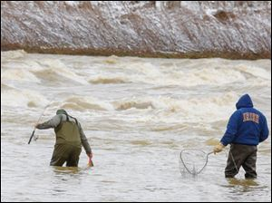 Anderw Anacki, left, Akron, hauls in a carp as his uncle, Bob Parry, Maumee, looks on as the two fish for walleye near a section of rapids on the Maumee River in Sidecut Metropark, Maumee.