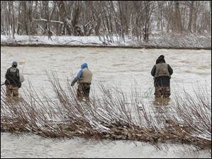 Fishermen try their luck hoping to catch a walleye in the Maumee River at Sidecut Metropark.