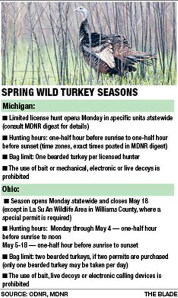 Wild-Turkey-season