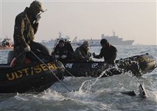 South-Korea-Ship-Sinking-113
