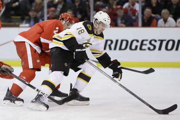Bruins-Red-Wings-Hockey-14
