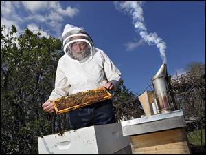 Barry Conrad inspects his honey bees at his Canal Winchester, Ohio, honey farm.