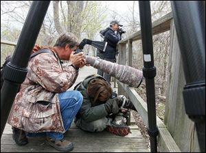 Lou Waldock, left, and Tina Gartley, both of Howell, Mich., photographing a green heron as it hunts for food.