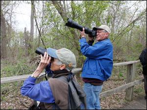 Ann Ellen Tuomey, left, and her husband Jim Tuomey, both of Taos, N.M., look at a warbling vireo.