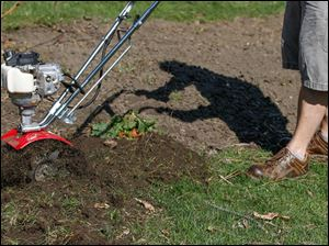Fred Bodmer uses a mantis tiller to remove grass from around the garden beds.