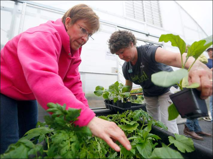 Master gardner volunteer Lori McMahon, left, and Yvonne Dubielak, right, Toledo GROWs Manager, puts together an order.