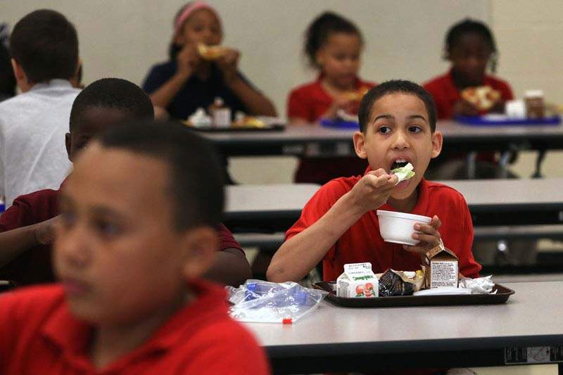 Healthy-Lunches-David-Maidlow