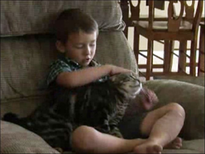 Jeremy Triantafilo and hero cat Jeremy Triantafilo, 4, and his cat who saved him from a dog who was biting his leg.