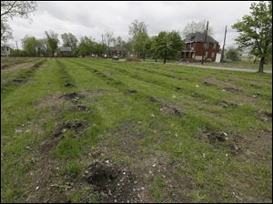 Vacant land in east Detroit is seen. A mass tree-planting effort is