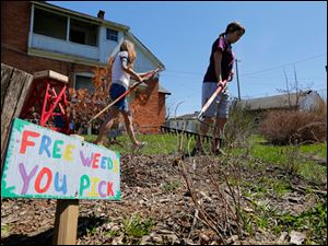 Madison Harmon, 12,  left, and Arianna Willis, 12 , right, weed a garden.