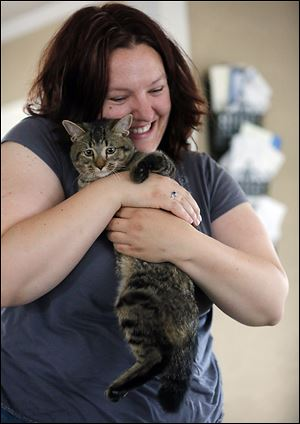 Dragon, a kitten surrendered by its owner, is held by foster caretaker Meaghan Fitzpatrick.  Dragon was born with deformed legs. A right hind leg was useless, and was removed April 30.