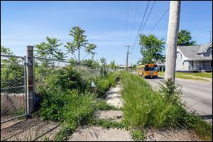 A school bus drives down Lincoln Avenue near an overgrown sidewalk near Smead Avenue in Toledo.