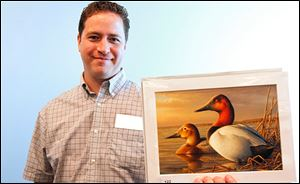 Adam Grimm, an Elyria, Ohio, native, won the 2013 Federal Duck Stamp contest with his oil painting of a pair of canvasbacks.