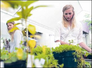 Lyndsye Buechel, right, and Christine Becerra check out plants available at an annual sale in Robbinsdale, Minn.
