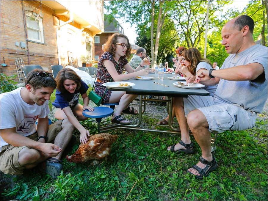 Owen Ludwig, left, Monclova, and Sarah Nathan, Toledo, pet a rooster as Julia Hamer-Light, Toledo, and Sarah's parents Wendy and Dan Nathan, Toledo, enjoy the food and company.