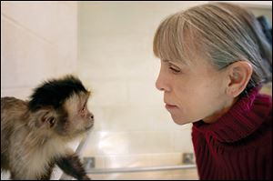 Claudia Thompson is a psychology professor at the College of Wooster who started Wooster's monkey colony. The capuchin monkeys are retiring to Florida.