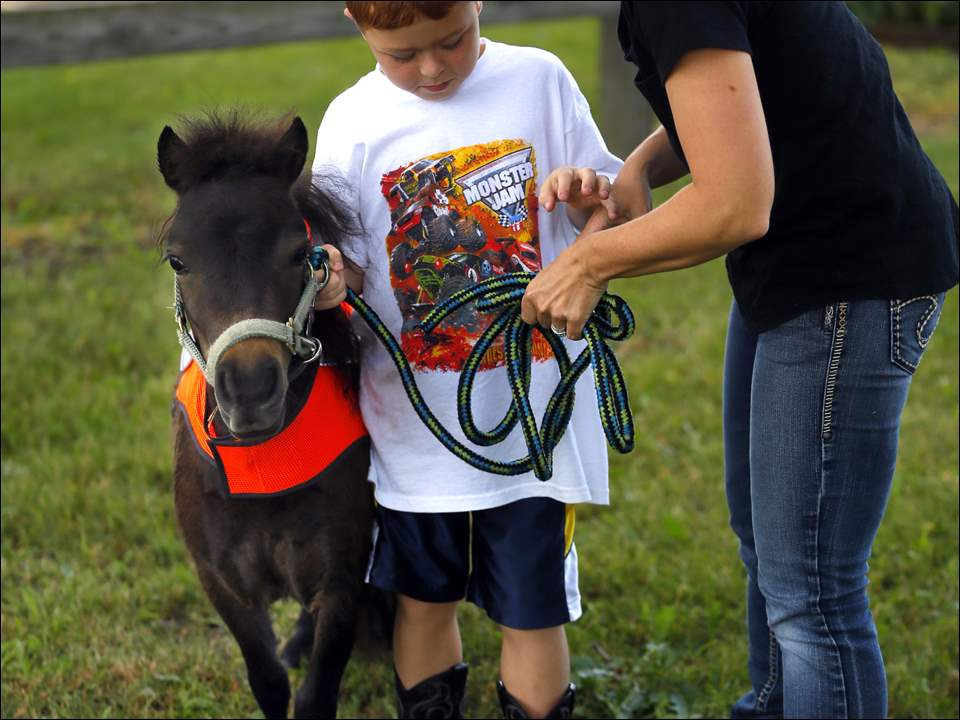 "Jen Carroll, right, from Whitehouse shows her son Crue Carroll, 6, how to hold the rains of their pony named ""Lil Bit."""