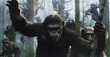 Film-Hollywoods-Ape-Man-1