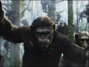Apes revolt in this scene from 'Dawn of the Planet of the Apes.'