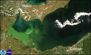 Satellite image of the 2013 algae bloom on Lake Erie.