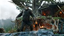 Box-Office-Andy-Serkis