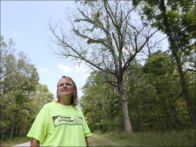 0004010100000000000 Amy Stone, educator with the Ohio State University Extension Office of Lucas County, stands near oak trees damaged by gypsy-moth caterpillars. Gypsy moths are a non-native, invasive pest capable of destroying trees and shrubs.