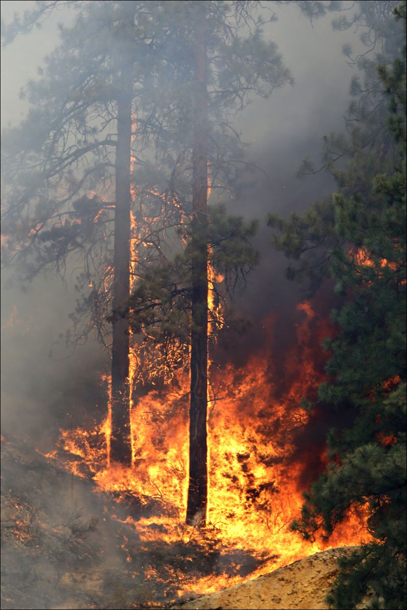 u0026 39 mother nature is winning here u0026 39   wildfire destroys about