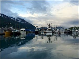 Fishing boats, reflected in the water, glow in the soft evening light at Valdez Harbor.