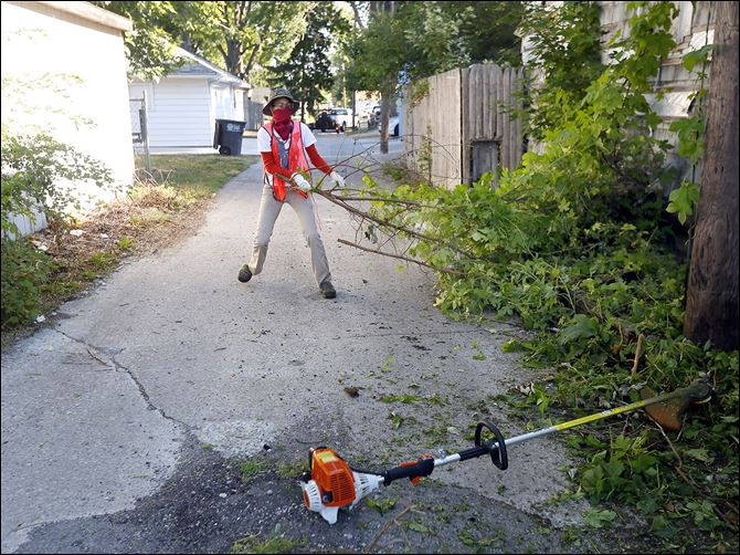 25n6cleanup-1 Volunteer Mykalah Anderson, 19, pulls foliage on Earl Street.