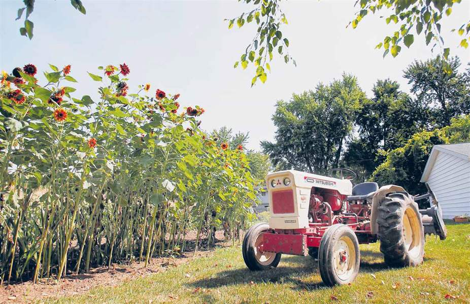 Chuck-Sattler-s-tractor-sits-next-to-his-garden-in-Maumee