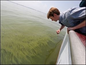 Collin O'Mara, president of the National Wildlife Federation, views algae in Lake Erie near the Toledo water intake crib.