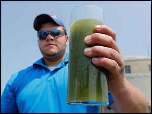 Shane Gaghen of Oregon holds a glass of algae filled Lake Erie water, near the Toledo water intake crib.
